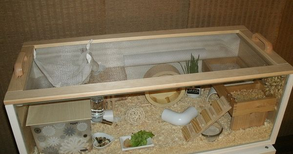 ikea billy roborovski hamster cage flickr photo. Black Bedroom Furniture Sets. Home Design Ideas