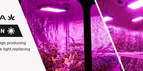Bestva Led Grow Light Led Grow Lights Led Grow Grow Lights