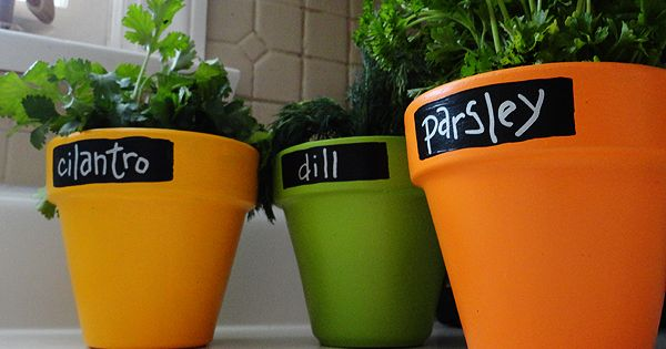 Painted clay pots with chalkboard paint, herb pots!