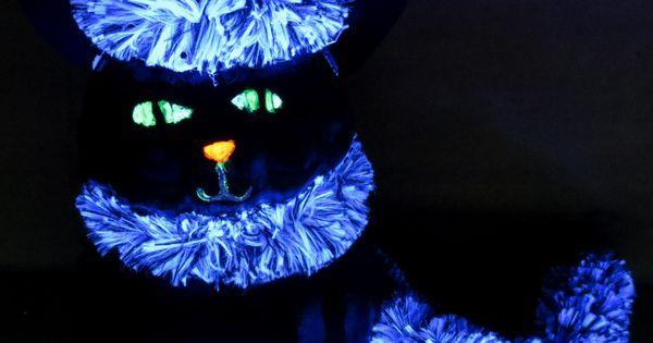 Un chat d Halloween fait avec deux petite citrouille, de la peinture ...