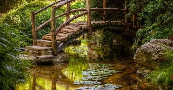25 Exquisite Pictures of Nature pond path