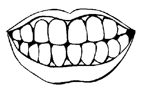 blank picture of teeth for how many teeth have you lost ...