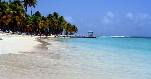 Plage de la caravelle guadeloupe favorite places spaces pinterest guadeloupe plage et les - Office du tourisme sainte anne guadeloupe ...