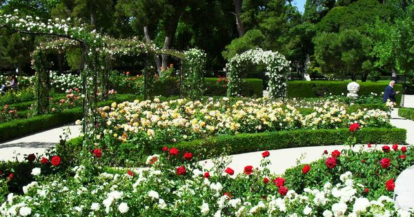 Jardines modernos con flores buscar con google for Plantas jardines modernos