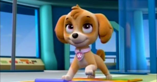 Skye from Paw Patrol Favorite Cartoon Dogs and Cats