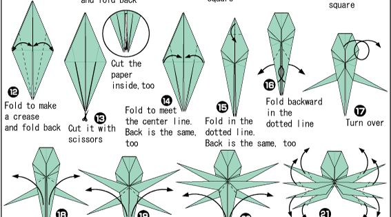 origami spider easy origami instructions for kids