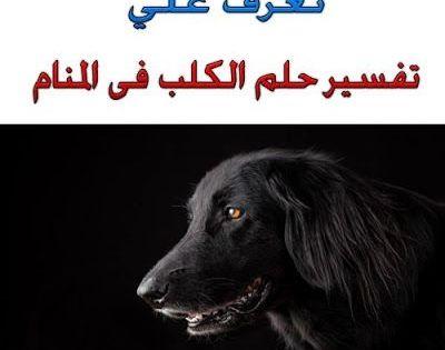 تفسير حلم الكلاب في المنام Poster Movie Posters Animals