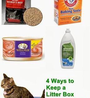 Best Cat Litter Box For Odor Control Choosing A No Smell Litter Box Best Cat Litter Cat Training Litter Box Cat Litter Box