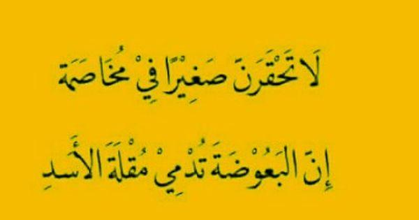 لا تحقرن صغيرا في مخاصمة ان البعوضة تدمي مقلة الاسد Positive Notes Arabic Calligraphy Qoutes