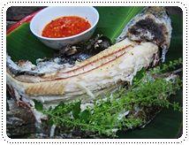 ปลาช อนเผาเกล อ น ำจ มรสเด ด เคร องเค ยง อาหาร อาหารไทย