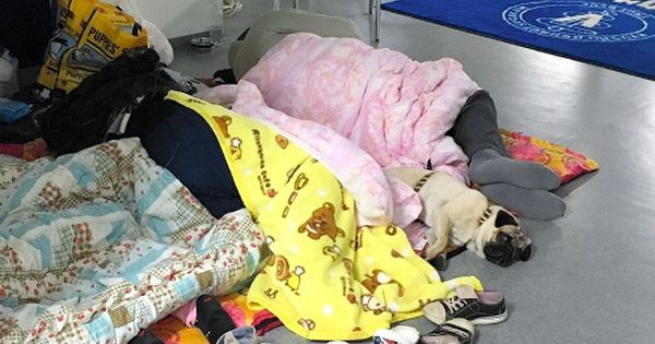 竜之介動物病院で愛犬らと眠る避難者 16日 熊本市中央区 同病院提供 動物 ペット 病院