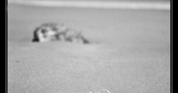 Converse - Converse en la arena