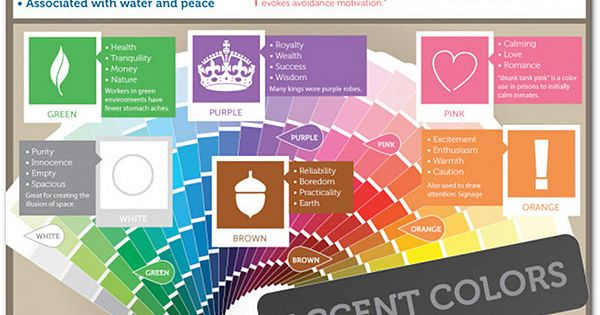 the psychology of color and branding infographic