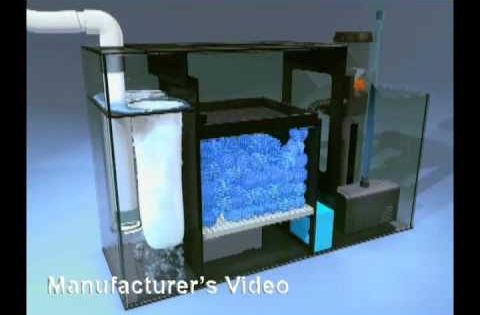 Diy freshwater filtration sump tank youtube aquarium for Fish tank filtration systems