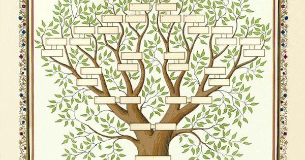 modele dessin arbre genealogique gratuit