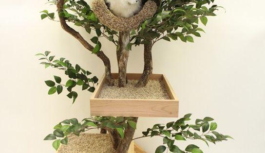 Cat tree fort