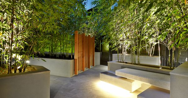 Bamboo courtyard in the city designed by lisa ellis for Courtyard landscaping melbourne