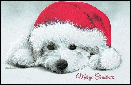 Westie Christmas Cards Westie Christmas Cards Santa Paws Holiday Puppies