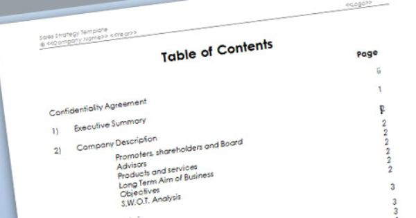 Sales Strategy Template For Microsoft Word Free Word Document