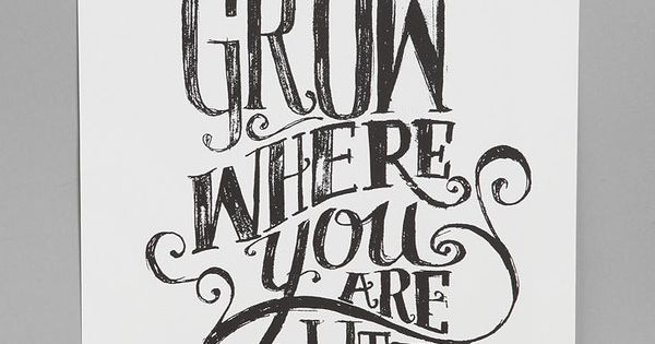 Matthew Taylor Wilson for Society6 Grow Where You Are Planted Art Print