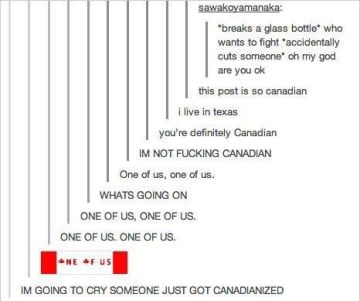 23 Hilarious Tumblr Posts That Show Just How Strange Canada Truly Is Tumblr Funny Funny Tumblr Posts Hilarious
