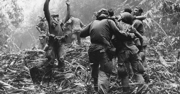 Vietnam book 4 casualties of war true