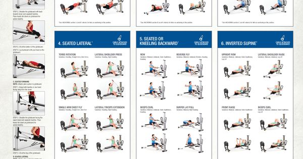 photograph relating to Printable Weider Ultimate Body Works Exercises named All The Weider Final Entire body Operates - Pantheon