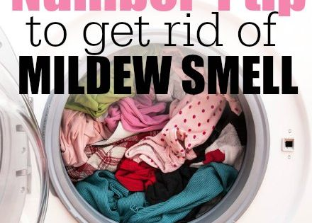 How To Get Rid Of Mildew Smell Only 1 Simple Ingredient Needed