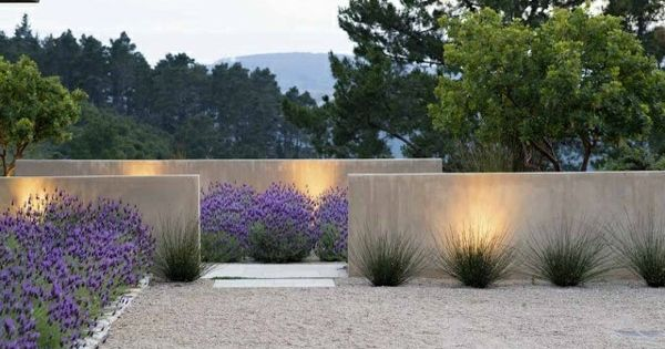 moderne gartengestaltung beispiele lavendel betonmauer outdoors pinterest gartengestaltung. Black Bedroom Furniture Sets. Home Design Ideas