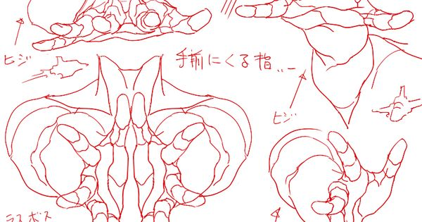 Human Character Design Tutorial : Drawing art hands draw finger hand human anatomy different