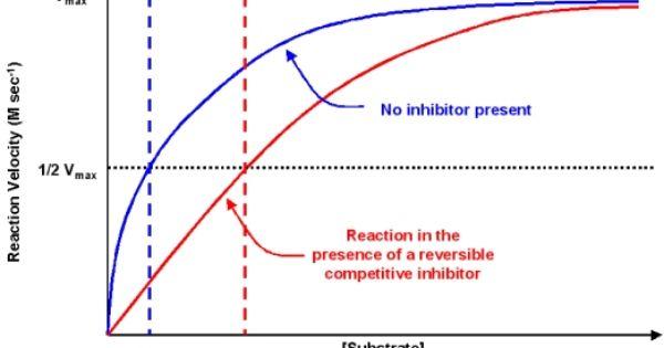 Competitive Inhibitor Biochemistry Science Exam