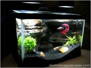 Dramatic Aquascapes Diy Aquarium Background Betta Paradise Fundos De Aquario Como Fazer Um Aquario Ideias Para Aquario