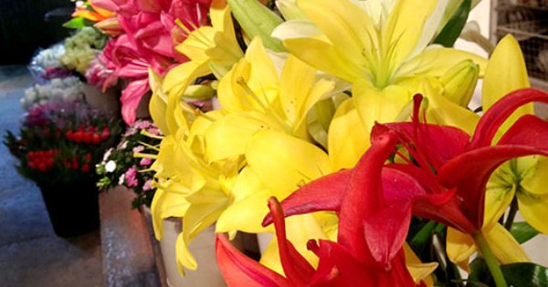 flower delivery chicago suburbs