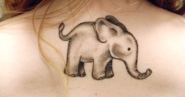 Love the elephant tattoo.