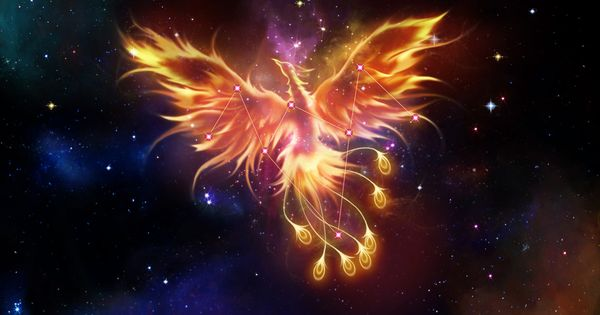 phoenix constellation saint seiya pinterest