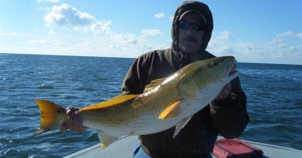 Fishing charters fishing guides fishing boats for Deep sea fishing perdido key