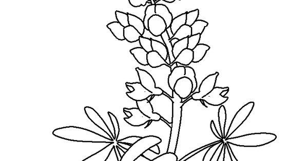 Http Coloringpagesplus Com Flowers Free Coloring Flowers