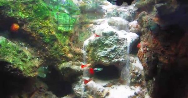 500 gallon fish tank with underwater waterfall this so for Waterfall fish tank