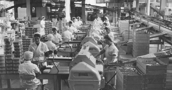 Chocolate Factories Norfolk