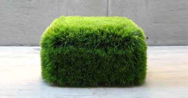 Let Grass Rule L Herbe Herbe Synthetique Jardins Verticaux