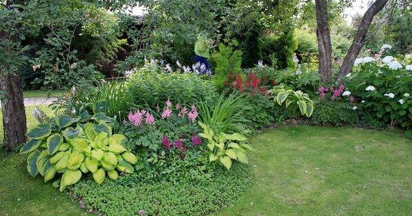 plantes d 39 ombre et fleurs multicolores id es et conseils