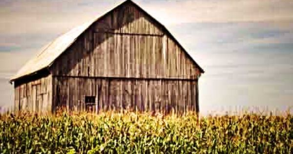 The Corn Field Barn Barns Great And Small Pinterest