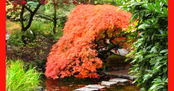 Butchart Gardens, Canada Photographer: Judi Jenkins ...