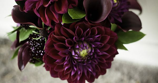 My wedding bouquet featured dark purple dahlias and calla lilies. Crafted by
