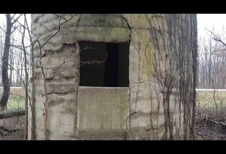 Tree Growing Inside Of Old Abandoned Concrete Grain Silo In 2020 Grain Silo Silos Concrete