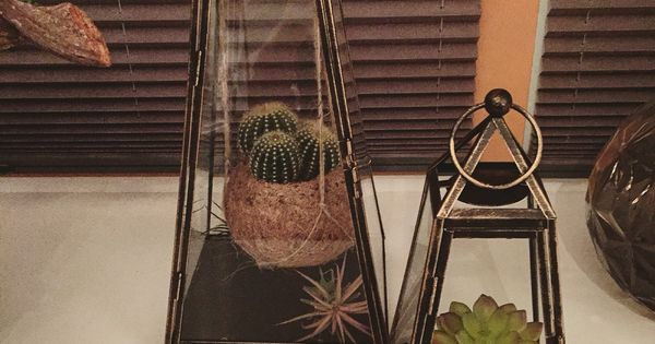 Vetplanten en cactussen in glazen windlichten our lovely new home pinterest vetplanten - Keuken decoratie model ...