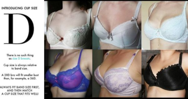 C Cup Breast Bra What is a D Cup? | Cup...