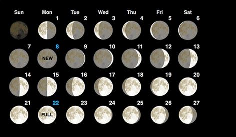 Moon Phase Calendar Calendario Lunar