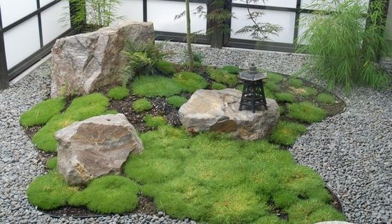 Garden design small indoor japanese zen garden with grass for Indoor japanese garden