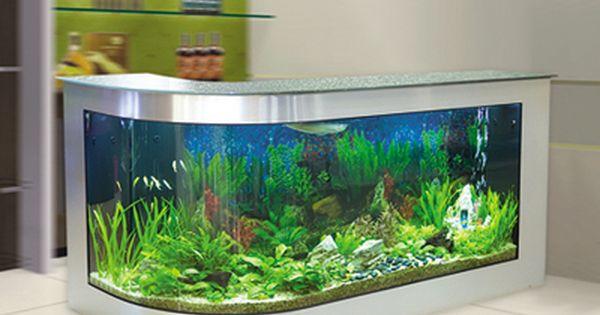 Fish tank bar for the basement home pinterest for Fish tank bar